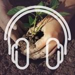 NL_Podcast_Cover_Boden_3