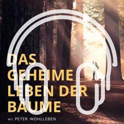 Podcast_Cover_Leben der Baeume-1