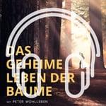 Podcast_Cover_Leben der Baeume